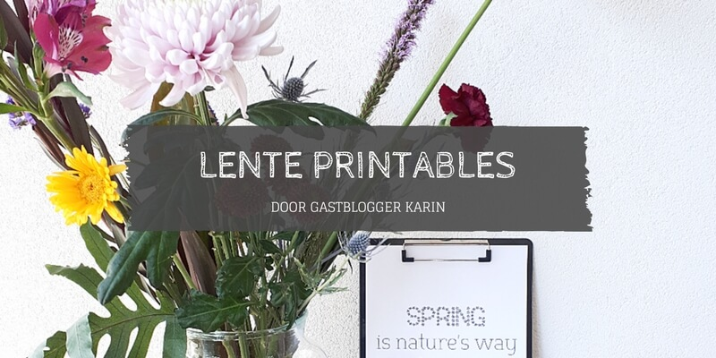 gratis download lente printable