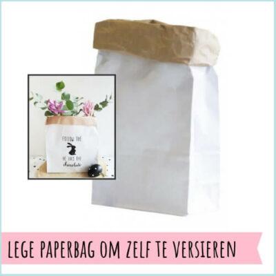 Lege paperbag om zelf te versieren